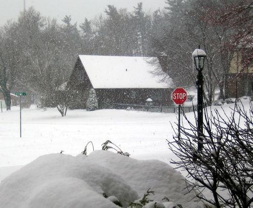 SnowyDad