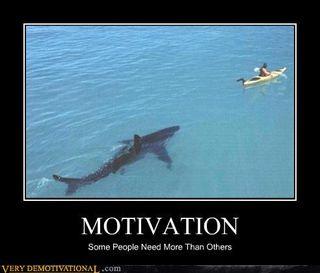Sharkmotivation