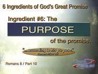 07Purpose