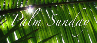 Palm-sunday-images-2-790x350