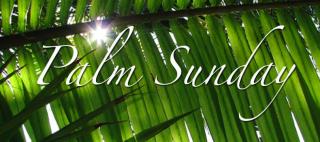 Palm-sunday-images-2-790x350