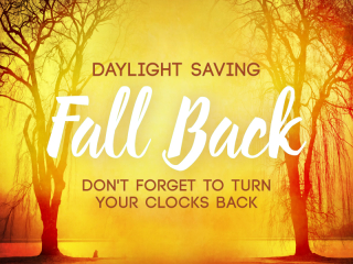 DAYLIGHTSAVINGSAutumn_Forest_Fall_Back_Still_SD