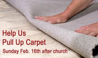CarpetPull